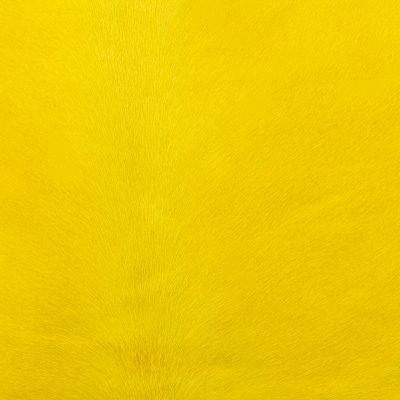 pony-jaune