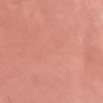 rose-cerisier